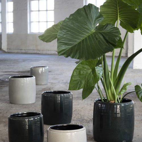 Caches-pots